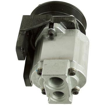 Daikin VZ63C14RJAX-10 Piston Pump