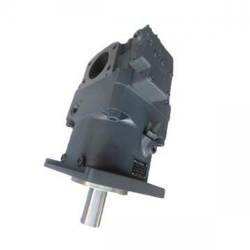 Yuken PV2R34-125-184-F-RAAA-31 Double Vane Pumps