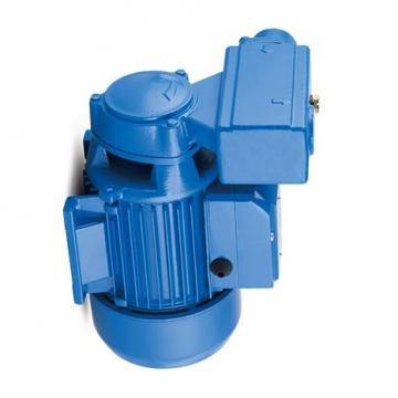 Yuken PV2R12-12-33-L-RAAA-4222 Double Vane Pumps