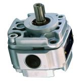Denison PV10-2R1B-C00 Variable Displacement Piston Pump