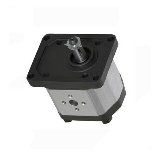 Denison T6C-028-2L03-C1 Single Vane Pumps #1 image